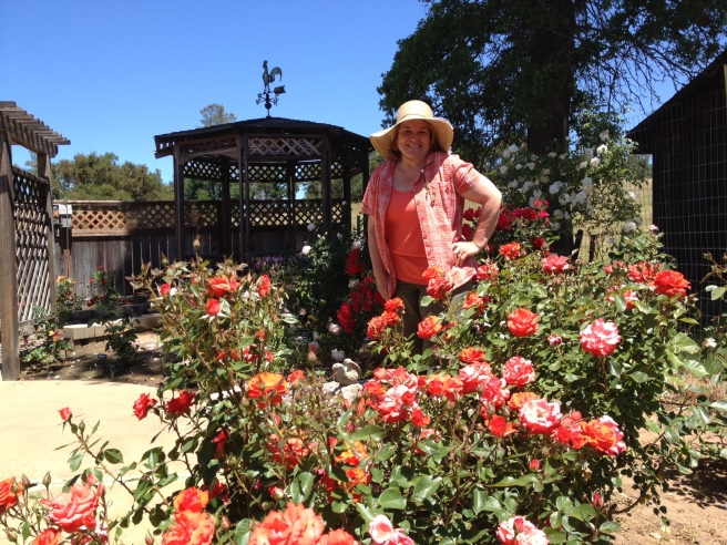 Debra Kinnick, Chair of Public Rose Garden, Amador Senior Center Rose Garden